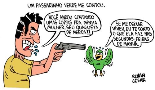 passarinho-verde